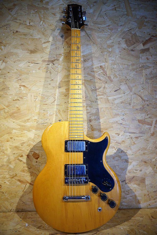 Gibson L6-S Custom 1976 (occ.)